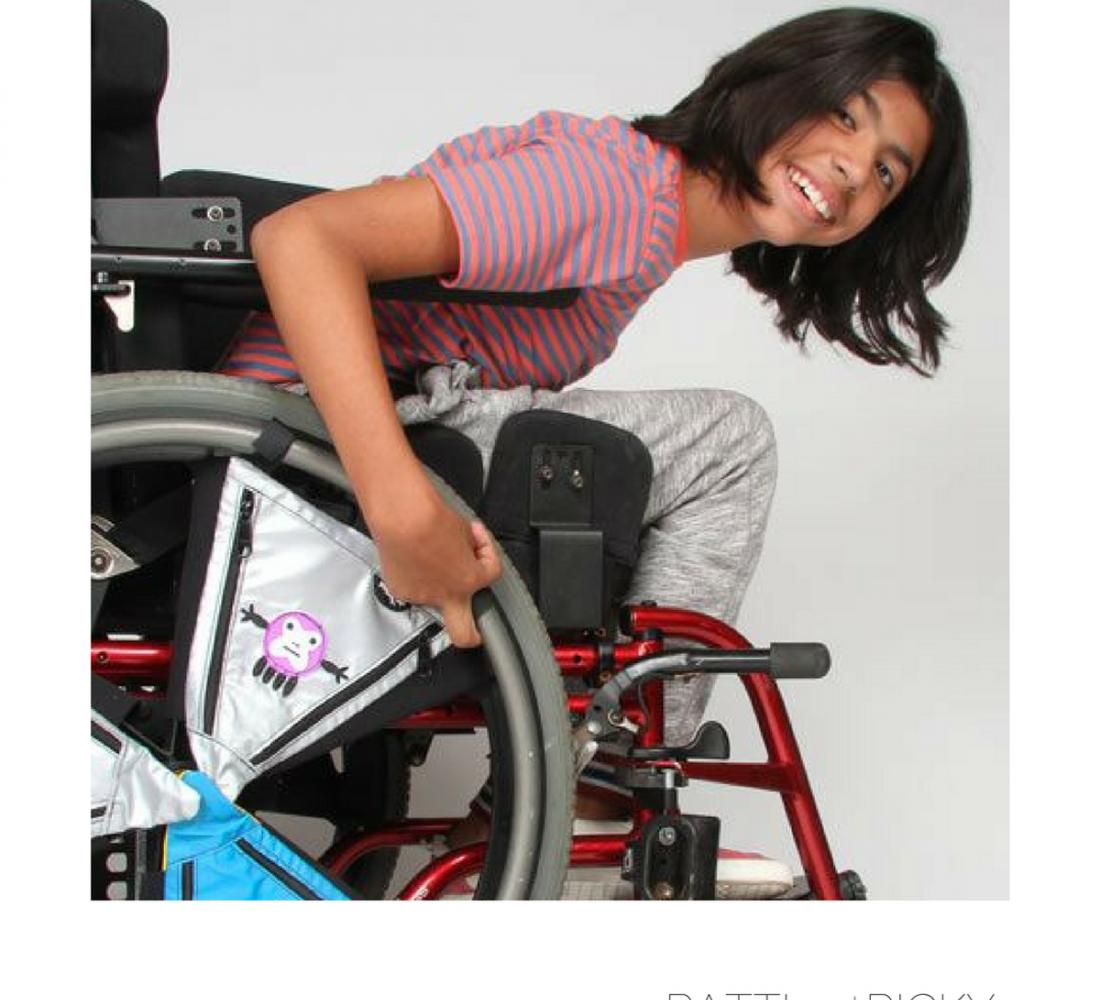 Manual Wheelchair Bags