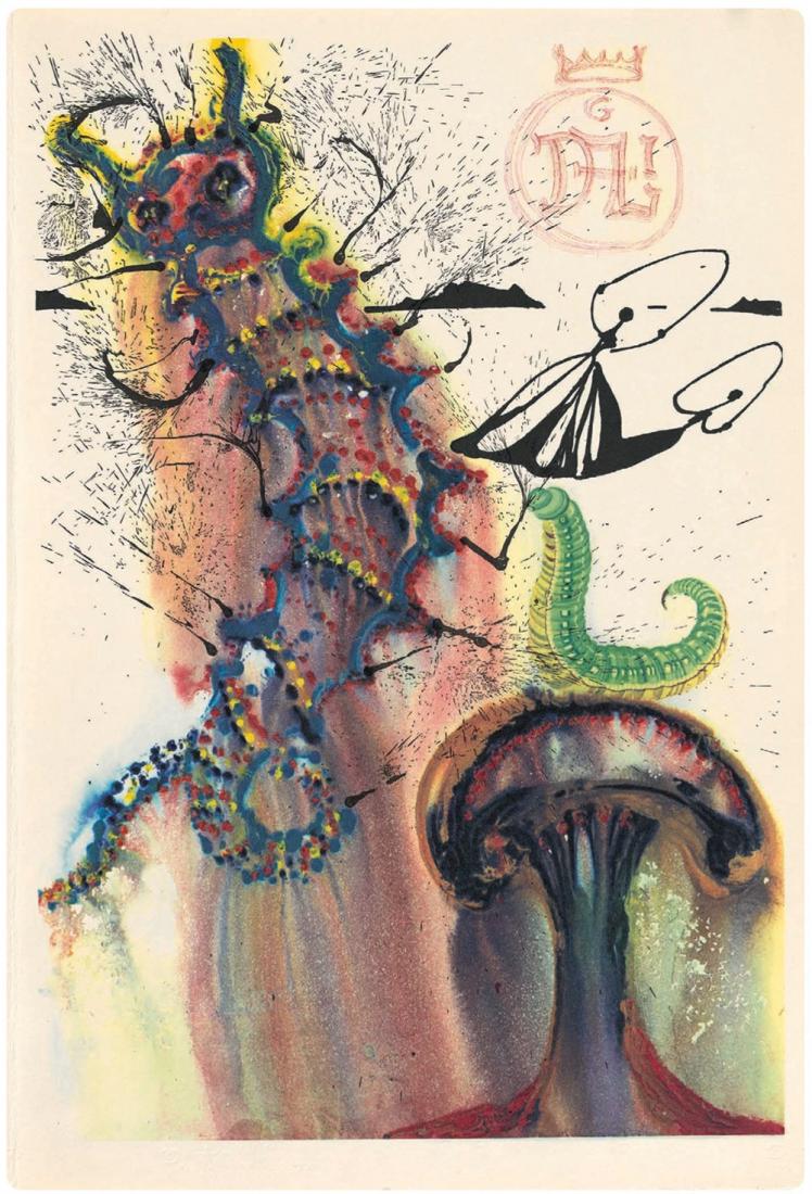 image6 1